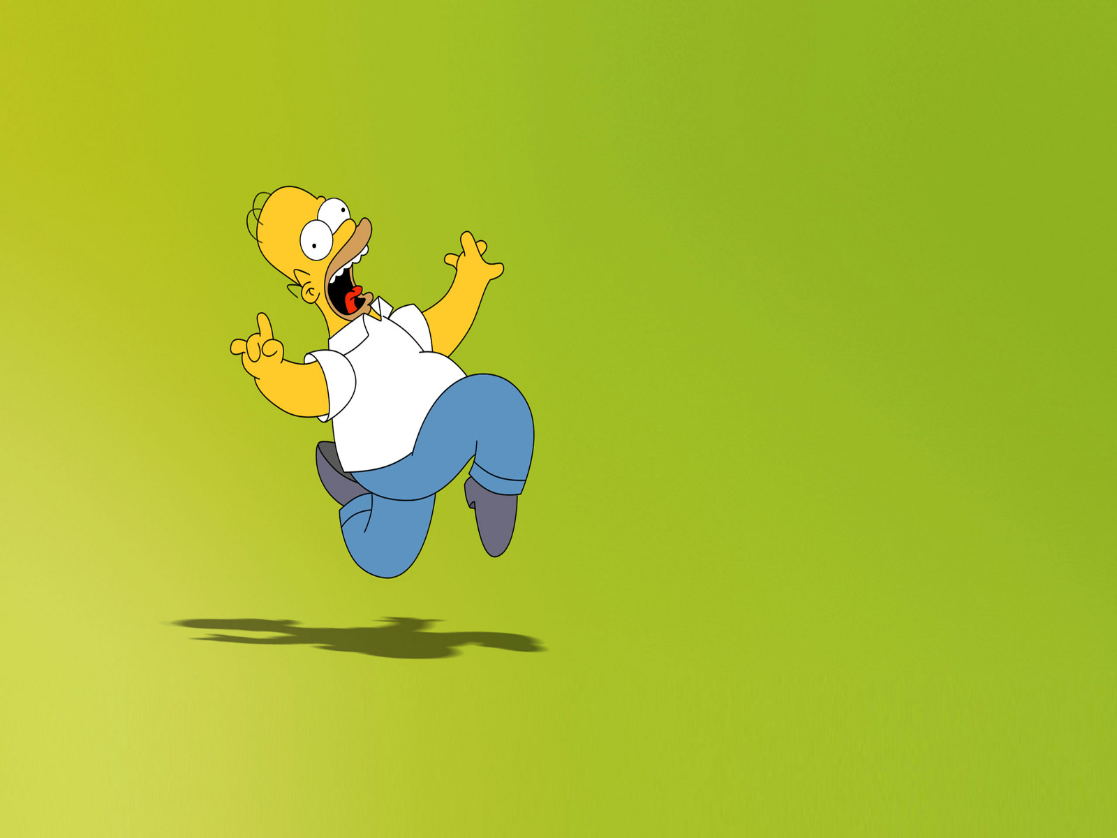 Crazy homer simpson