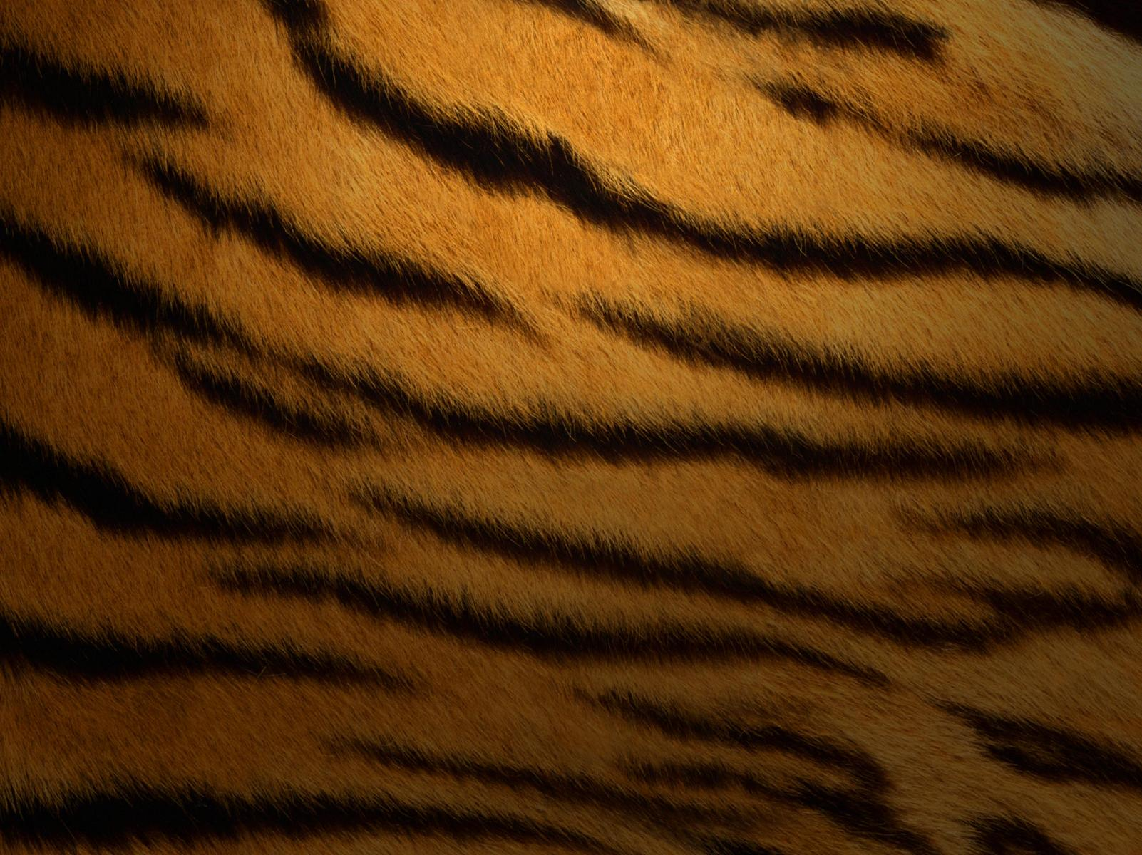 Mac tiger wallpaper
